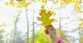 Autumn - a girl is looking at a beautiful autumn leaf, which she just picked up - tilting camera - ProRes