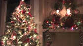 trees : holiday christmas decoration Stock Footage