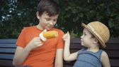 sabugo : footage two brothers eating boiled corn sitting on bench in park