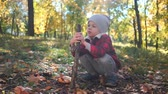 little boy is playing with a tree branch sitting on ground with yellow leaves in autumn park