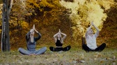 Group of young yoga practitioners doing yoga exercises in park. Women meditate outdoor infront of beautiful autumn nature Vídeos