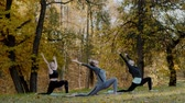 Group of Young women doing Yoga action exercise healthy in the park. Health lifestyle concept.