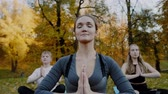Group of Young women practicing yoga outdoors. Females meditate outdoor infront of beautiful autumn nature. Vídeos
