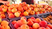 Farmers food market stall with a variety of organic fruit for example, apples and pears.