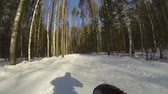 bike ride : A man mountain biking in the snow forest, view from side of wheel