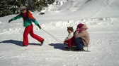 trenó : Happy family having fun playing in a snowy forest in the mountains in winter. Mom and her two children are sledding. They are laughing.