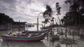 kabin : Timelapse fisherman village at Penang near the mangrove swamp. Th monkeys is play around the place. Stock mozgókép