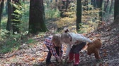 первый : First love. Kids in the forest. Children in the forest. Girl and boy playing in the forest. Autumn, summer. Happy kids walking in the forest.
