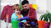 семя : Father and son plant flowers in colored pots. Bearded man and a young boy planted seedlings in pots. Concept of family gardening.