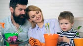 семя : Parents in the background look at a boy who planted flowers in colored pots. Little gardener. A boy with his parents plant flowers.