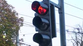 clignotant : Road crossing traffic lights turning from red to green light in autumn