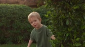 выглядывал : Little boy hiding behind a tree playing hide and seek, slow motion.
