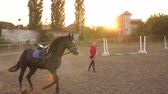 horse gait : Girl is teaching a black horse to run around in a circle on a horse farm in the fall at sunset. Slow motion. Training of the horse running in a small circle. Stock Footage