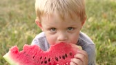 kavun : Beautiful boy with blond hairs eating watermelon sitting on the grass in a Park, close-up portrait. Happy 4 year old boy eating juicy ripe watermelon in the Park in summer on a picnic.