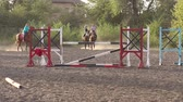 eyer : Group of children engaged in equestrian sports on a horse farm. Stok Video