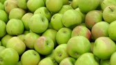 paketlenmiş : Counter with fruit in supermarket. Fruits in supermarket. Green apple fruits in a supermarket. Bunch of green apples on boxes in supermarket. Stok Video