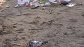 szennyeződés : The beach is contaminated with plastic garbage. Garbage on the beach, dirty sand. Close-up of a pigeon on the beach where a lot of garbage. Environmental pollution. Stock mozgókép