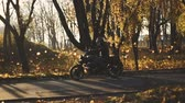 cafe racer : Man Riding old custom cafe-racer Motorcycle on forest Country Road at sunset. Stabilized shot Stock Footage