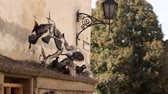 hejno : Flock of pigeons flying on the square in the city
