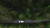 sete : Aerial view of car driving through the forest on country road. White SUV car driving the empty road Vídeos