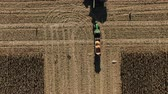 Autumn field and harvesting process top view. Yield increase, success season for economy, money land invest in agriculture. Two Combines Harvests Reaping Corn on Golden Field.