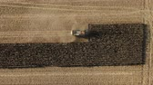 mısır tarlası : Electric Combine, Harvester Removes Oats, view from Height, Tracking GPS System