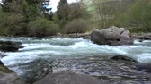 река : Video of a river at Caldes, South Tyrol, Italy.