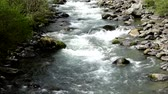 altoadige : Fast motion video of a river at Caldes, South Tyrol, Italy. Stock Footage