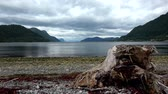 mais : Storfjorden or Storfjord is a 86 km long fjord in the Sunnmore region of More og Romsdal county, Norway. Vídeos
