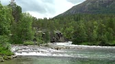 skandynawia : River space near the town of Bjorli in Oppland, Norway. Wideo