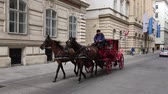 vídeň : Carriage ride with Fiaker in Vienna - Austria. Dostupné videozáznamy