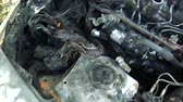 yanmış : The Car After the Fire. Burnt Out Car With an Open Hood. Engine Burned Out Car Wreck After a Fire. Vandalism.