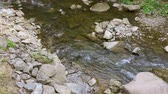 fast river : Quick mountain stream among stones. On a sunny day in summer or in spring. Close-up.