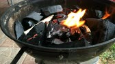 ohniště : Burning firewood on the mettalic grill. Brazier with burning firewood. Tongues of flame, smoke, coal and ash. For cooking on the barbecue. For outdoors picnic.