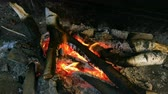 wood grill : Burning firewood on the mettalic grill. Brazier with burning firewood. Tongues of flame, smoke, coal and ash. For cooking on the barbecue. For outdoors picnic.