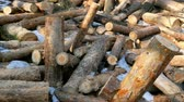 장작 : Stacked firewood in a pile outdoors close-up. A pile of chopped firewood ready for stacking. Preparation heating house in winter.