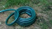 irrigação : Home gardening. New green rubber hose