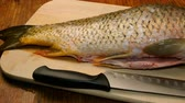 Homemade kitchen. Peeled without husk large river fish carp and a kitchen knife lie on a cutting board on the kitchen table. In move. Close-up.