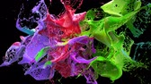 slomo : Colored liquidsd explodes into splashes over black background with alpha channel, slowmotion Stock Footage