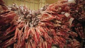 butchered : Carcasses of row in meat factory Stock Footage