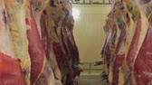 butchered : Carcasses of cows in row in meat factory