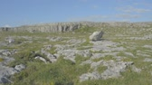 trial : Famous protected burren limestone national park ireland - Wild Atlantic Way Route. Flat video profile.