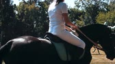 equestrian sport : the nature of the sport horse show jumping training Stock Footage