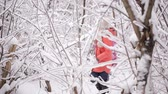 śnieżka : Two little sisters playing in the winter woods between snow-covered trees Wideo