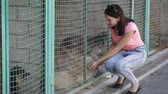 дворняжка : Girl volunteer in the nursery for dogs. Shelter for stray dogs. Стоковые видеозаписи