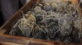 устрица : Oysters in a wooden box with hay