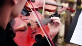banquete : musical ensemble. musician playing the violin Stock Footage