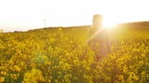 semente : beautiful girl walks on field of flowers at sunset Stock Footage