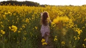 agricultura : girl running cross the field at sunset.Slow motion Stock Footage