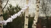 женат : Trees decorated with paper garlands